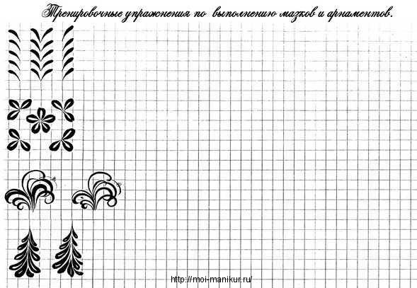 Тренировочная карта по выполнению мазков и орнаментов.