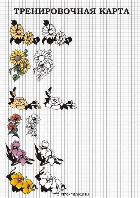 Как нарисовать цветы с помощьюб тренировочной карты для росписи ногтей
