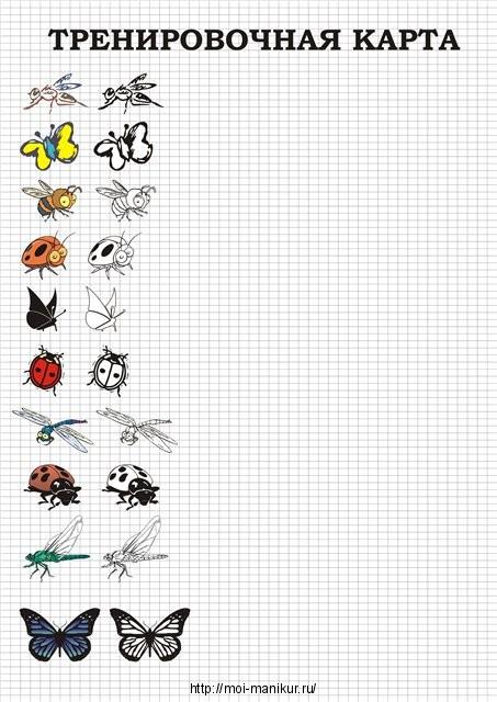 Тренируемся рисовать насекомых на тренировочных листах