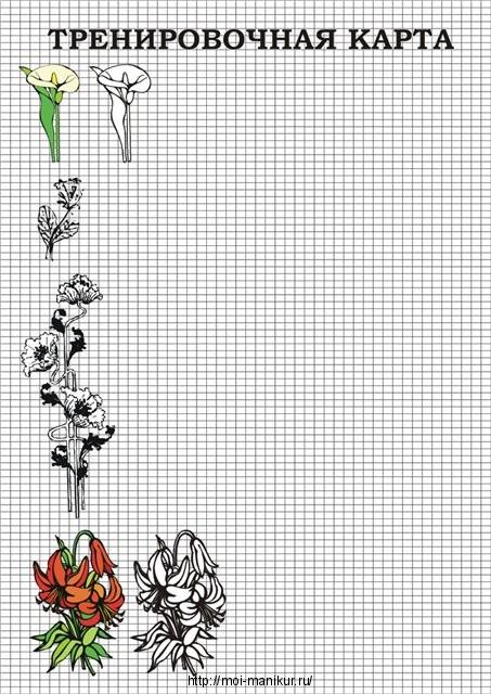 Рисуем цветы на тренировочных картах