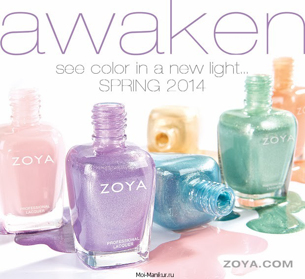 Awaken 2014