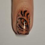 глаз тигра - шаг 5