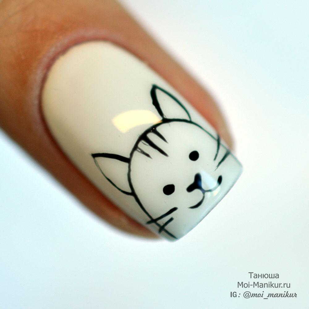 рисунок кота на ногтях